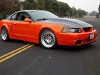 2004-ford-mustang-targa-conversion-12
