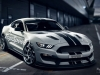 2016-ford-shelby-gt350s-race-car.jpg