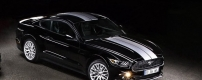 2016-mustang-le-mans-50th-anniversary-edition-04.jpg