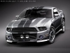 2-2010-eleanor-ford-mustang
