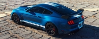 2020-Ford-Mustang-Shelby-GT500-19.jpg