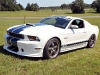 2011-form-mustang-shelby-gt350-15