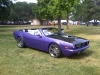 purple-bbp-cuda-07