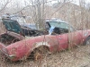 abandoned-1967-firebird-convertible-john