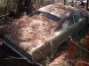 abandoned-for-sale-1966-pontiac-gto-convertible-shane