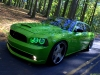 snake-skin-green-chargum-srt8-schen-photography-04