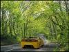 2008-cuda-concept-rafael-reston-wallpaepr-green-woods