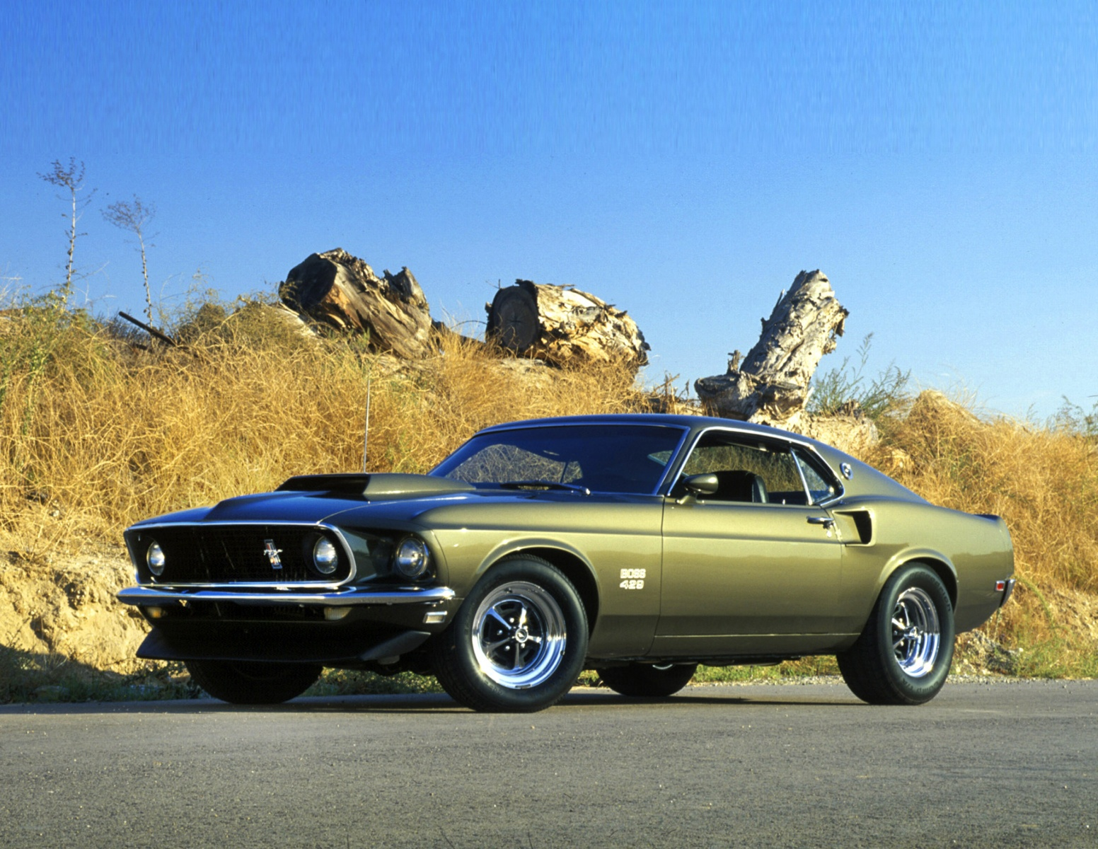8 Little Known Facts About Muscle Cars