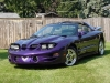 bright-purple-metallic-pontiac-firebird-trans-am