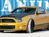 shelby-gt640-golden-snake-geigercars-03