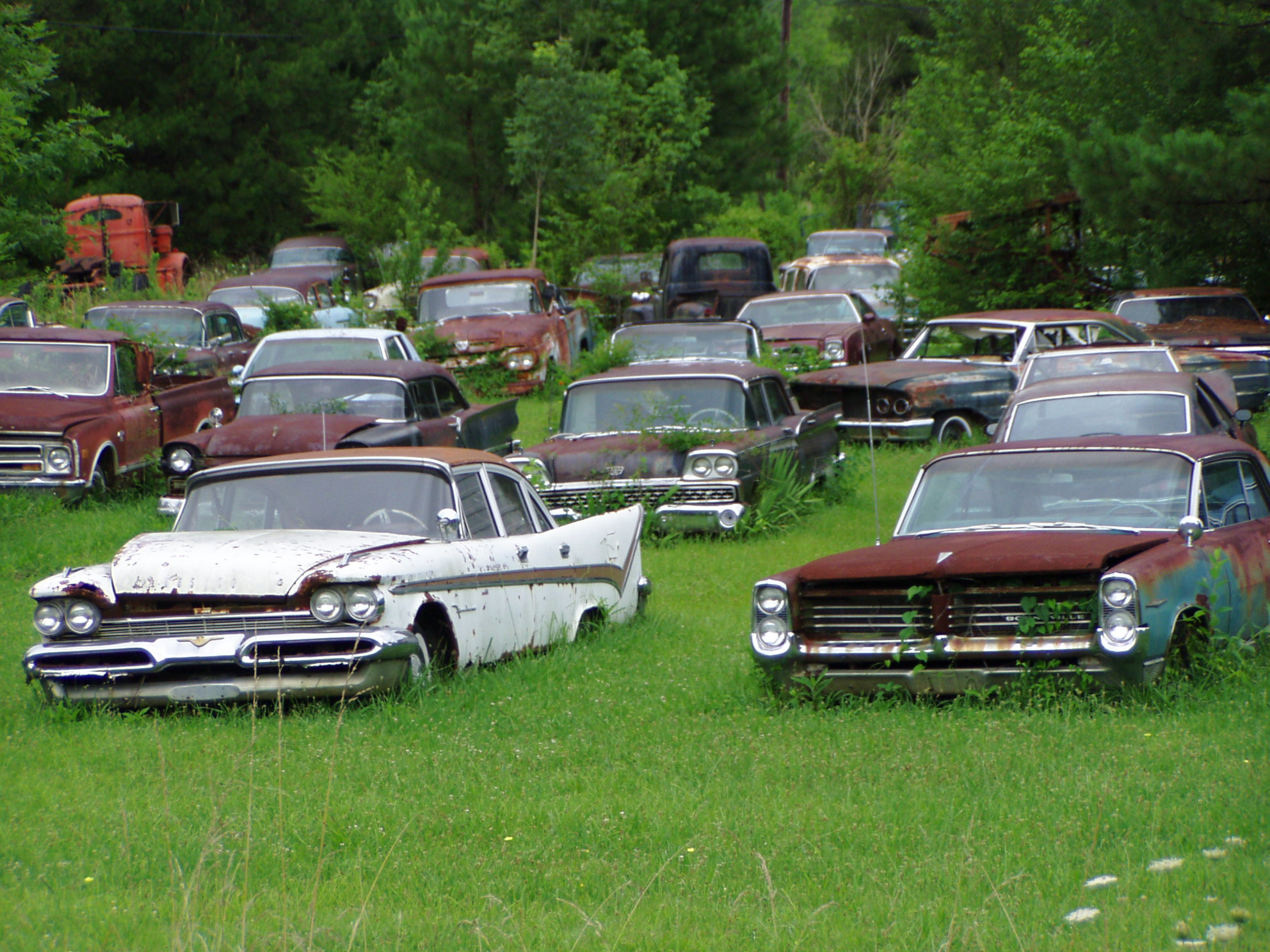Junkyard Beauties | AmcarGuide.com - American muscle car guide