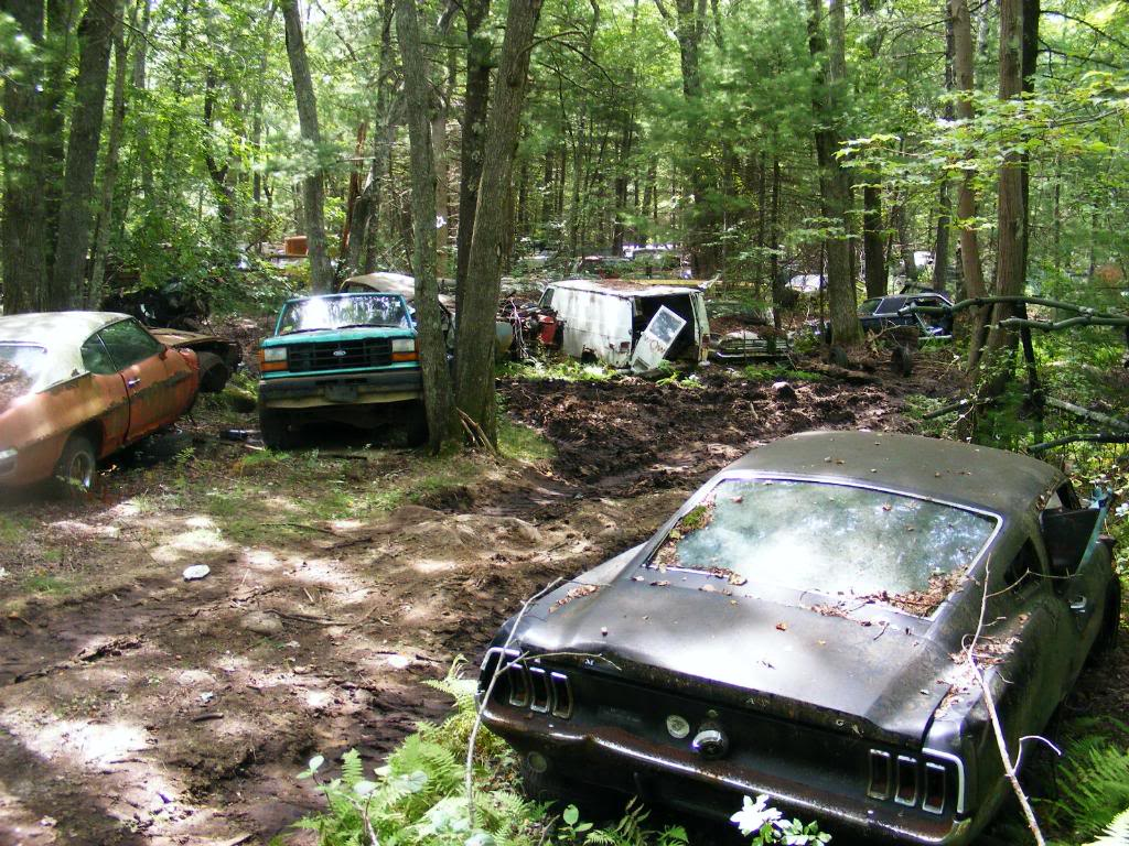 Junkyard Beauties Amcarguide Com American Muscle Car Guide