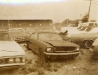 1-ford-mustang-junkyard-beauties
