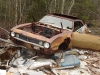 1967-camaro-junkyard-beauties