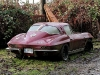 corvette-junkyard-beauties