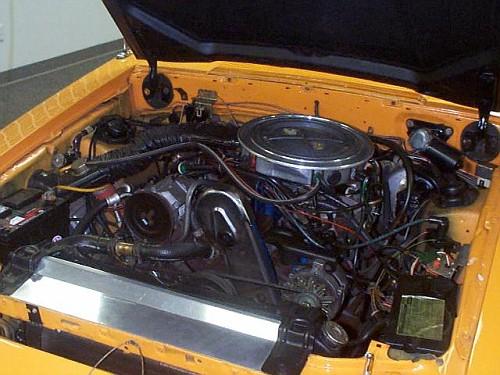 McLaren M81 Mustang | AmcarGuide.com - American muscle car guide