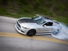 MMD by Foose Burnout Composite.JPG