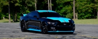 2015-Pettys-Garage-King-Premier-Ford-Mustang-GT-Fastback-4.jpeg
