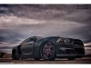 2011-charger-rt-hemi-wide-body-10