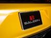 saleen-black-label-2015-mustang-302-12