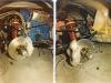 cobra-csx3015-super-snake-restoring-14