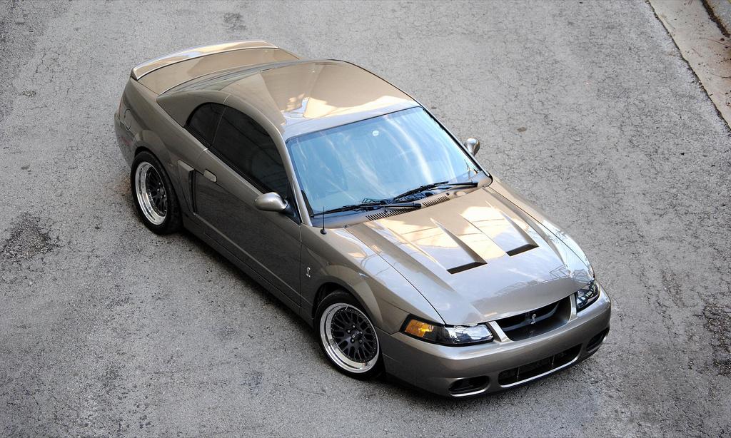 2003 SVT Mustang Cobra aka Terminator   AmcarGuide.com ...