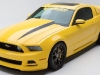 mustang-yellow-jacket-2014-01