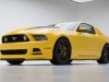 mustang-yellow-jacket-2014-03