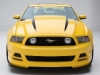 mustang-yellow-jacket-2014-05