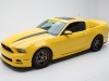 mustang-yellow-jacket-2014-06