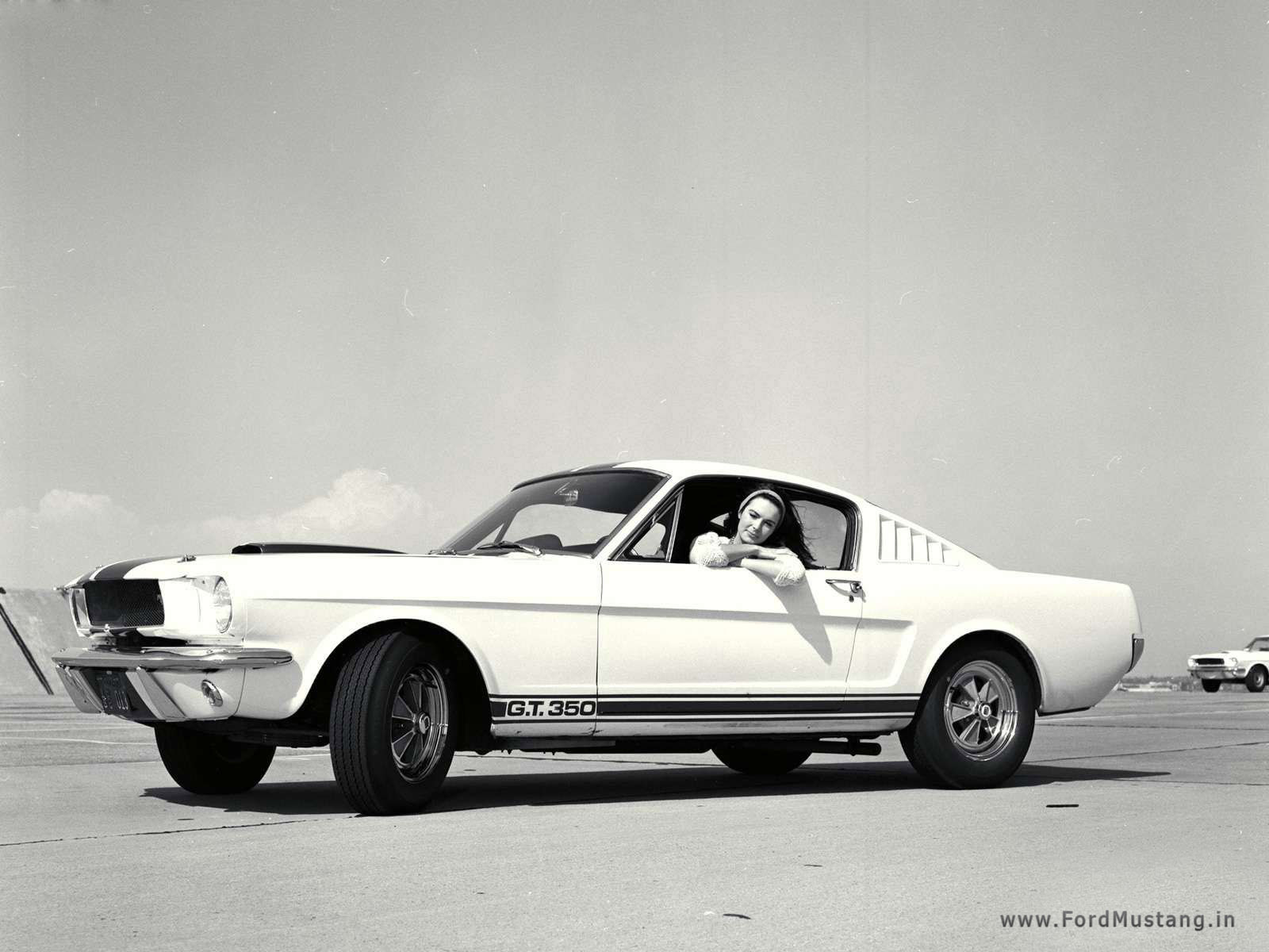 Shelby struck a deal with the Hertz Corporation in 1965 in order to