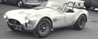 Random Snap: 1965 Shelby Cobra 427