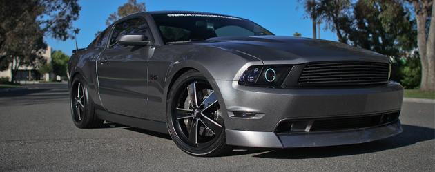 Random snap: Wild E. Coyote 2011 Mustang GT