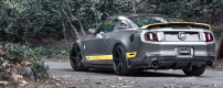 2011 Mustang GT Chicane