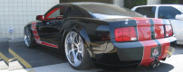 Mustang sits on 24s