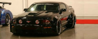 2006 Tiger Snake Custom Widebody Mustang