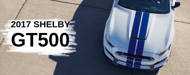 Rumor: 2017 Shelby GT500