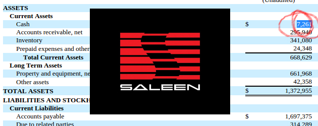 saleen-automotive-financial-strugle